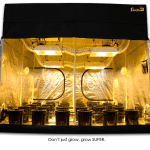 SuperCloset 9×9 SuperRoom Hydroponic Grow Tent