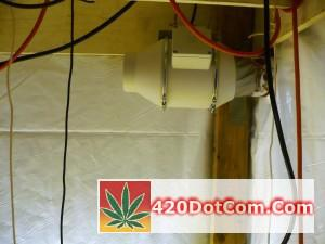 Soler & Palau TD-100X Installed In My Grow Tent
