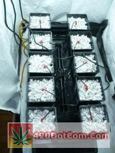 Versagrow 10 pot hydroponic system