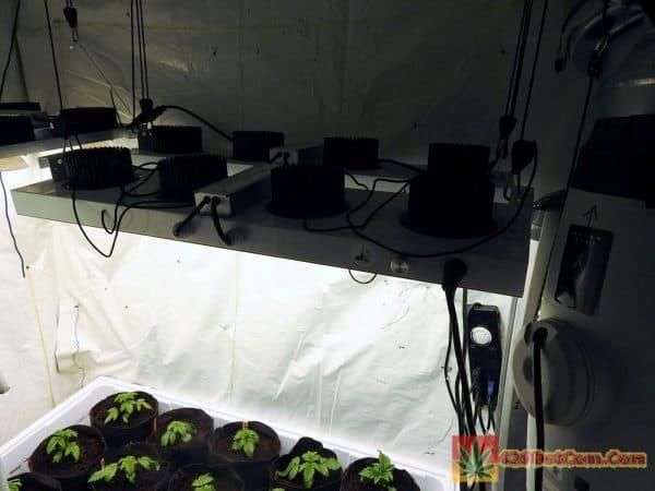 cob led setup