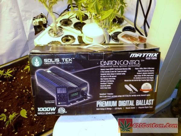 Solis Tek Matrix 1000W Digital Ballast Review