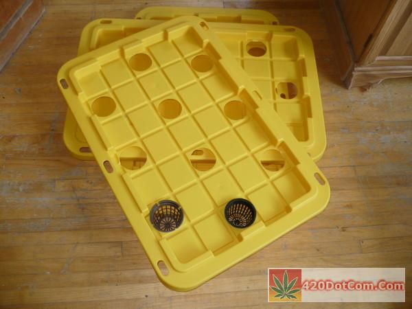 DIY Aeroponics tote lids with holes cut out