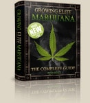 How To Grow Your Own Weed – Growing Elite Marijuana Review