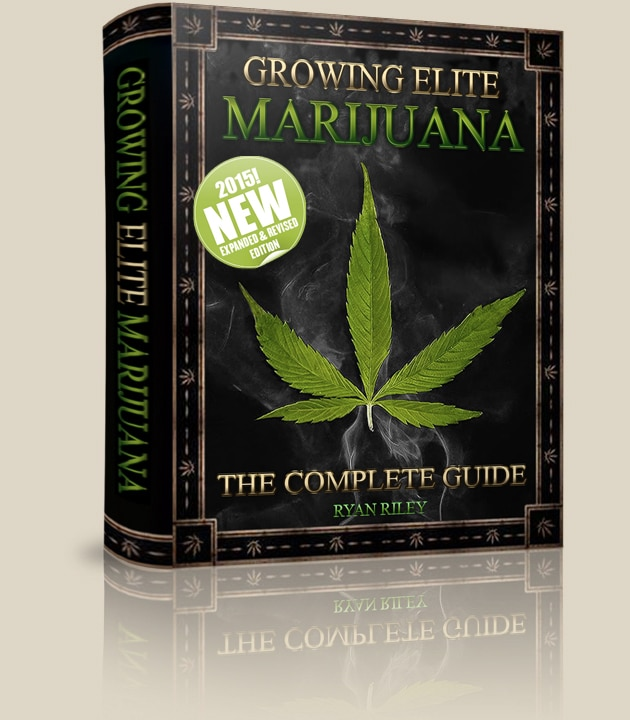 How To Grow Your Own Weed - Growing Elite Marijuana